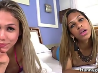 Hot shemales Gaby Abelha and Bianca Cordelly share one big fat cock