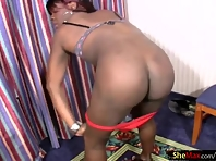 Long haired black shemale enjoys sucking big cock