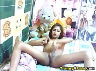 Asian Tranny Jerking Off her Cock